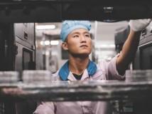 Arbeitsrecht – Apple meldet mehr Verstöße in der Lieferkette