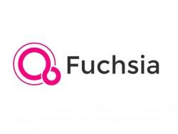 Google Fuchsia (Bild: Google)
