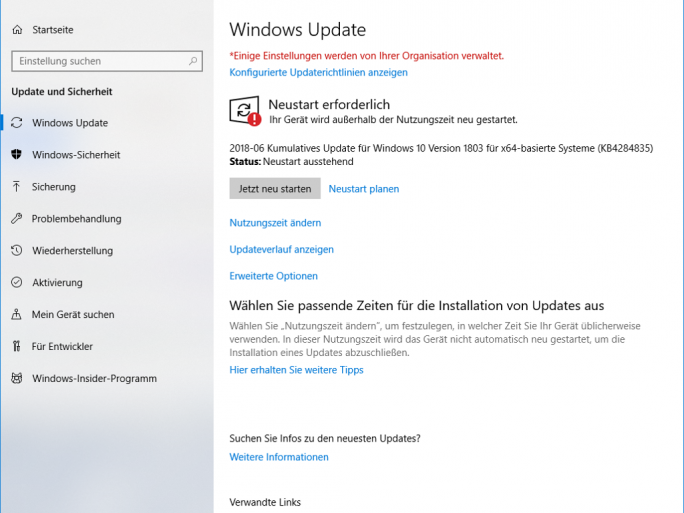 Windows-Update-Juni-KB4284835 (Screenshot: ZDNet.de)