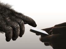 Corning stellt Gorilla Glass 6 vor