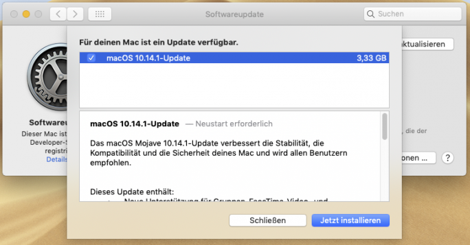 macOS 10.14.1 Update (Screenshot ZDNet.de)