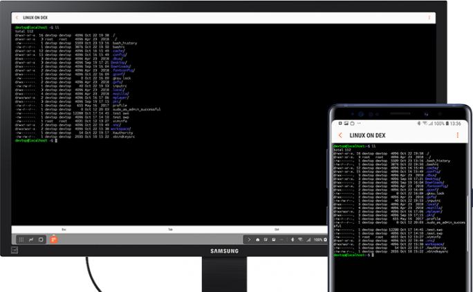 Linux on DeX (Bild: Samsung)