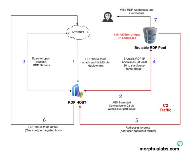 GoldBrute-Botnet (Bild: Morphus Labs)