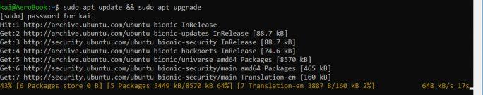 WSL: Linux aktualisieren (Screenshot: ZDNet.de)