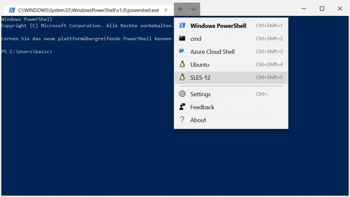 WSL: Installation von Windows Terminal Preview (Screenshot: ZDNet.de)