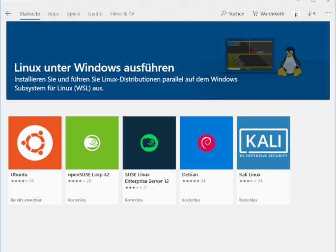 WSL: Windows Subsystem for Linux (Screenshot: ZDNet.de)