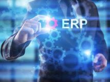 Anpassung von Cloud-ERP: Was ist der beste Ansatz?