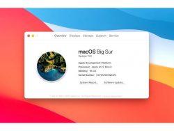 macOS Big Sur mit Apple-Prozessor (Bild: Apple)