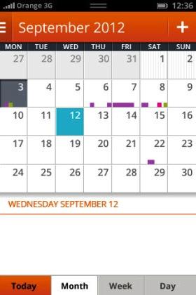 Der Kalender in der Übersichtfunktion (Bild: NetMediaEurope).